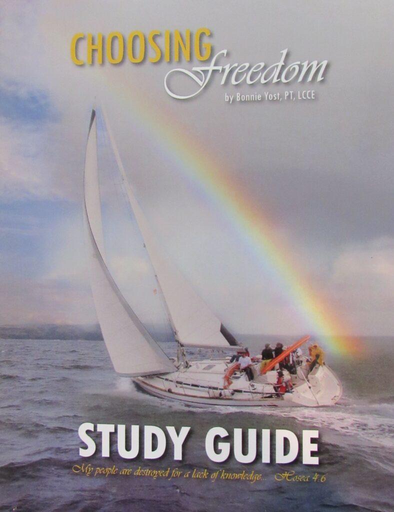 heart of healing book's predecessor a bible study book called choosing freedom